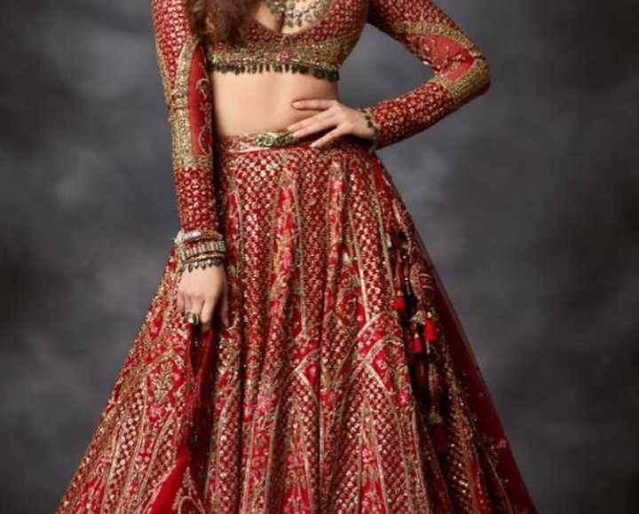 Shraddha's looks are perfect for weddings
