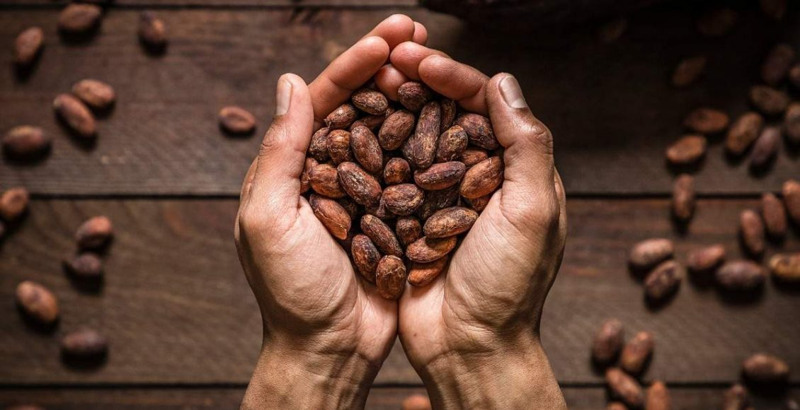 Why chocolate is good for adults too