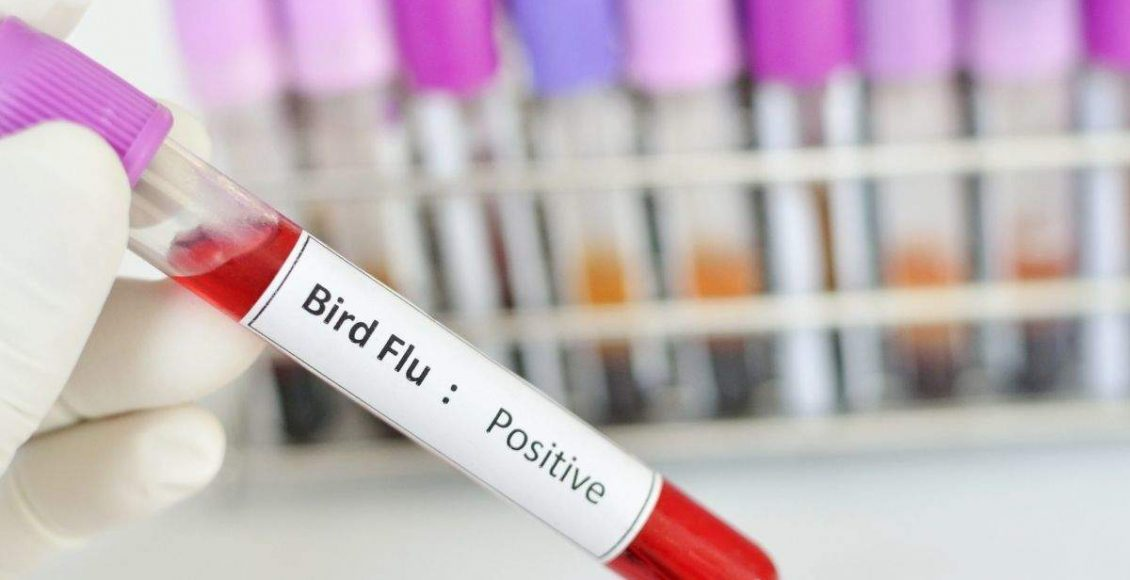 First case of Bird flu death reported in India